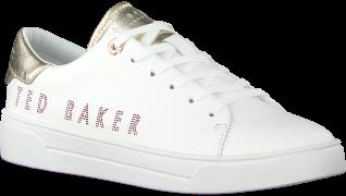 Ted Baker Baskets basses 243066 en blanc